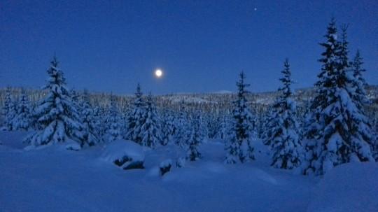Stillhet under månsken!